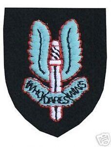 GENUINE-ISSUE-SAS-CAP-Beret-BADGE-SPECIAL-AIR-SERVICE