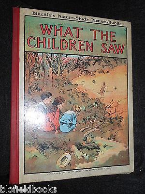 C1910 Rare Children's Nature Study Picture Book Illust Top Wassermelonen Begeistert What The Children Saw
