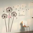 Adesivo Parete Fiori Dente di Leone Decorazione Muro Muraria Arte Wall Sticker