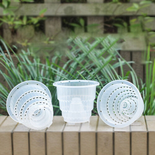 Clear Plastic Orchid Pots With Holes Transparent Flower Pot Succulent Plants