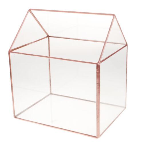 Glass Geometric Terrarium Succulent Plant Planter Box Air Plants Holder Gift