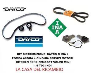 Kit Distribuzione Pompa Acqua Cinghia Servizi Peugeot 207 307