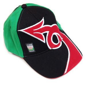 Wales Dragontail Supporter Hat