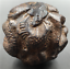China-Hand-Carved-natural-wooden-12-Zodiac-ball-statue-tiger-dragon-horse thumbnail 2