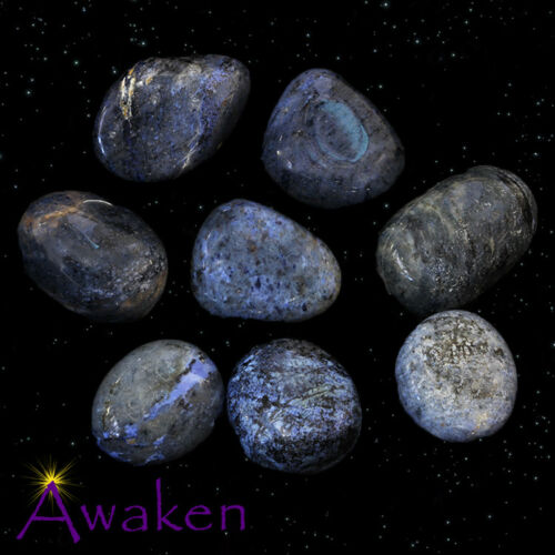 *ONE* DUMORTIERITE Natural Tumbled Stone Approx 15-20mm *TRUSTED SELLER*