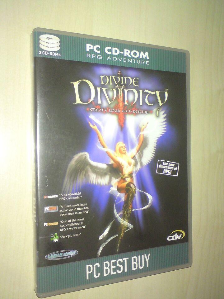 Divine Divinity, til pc, adventure