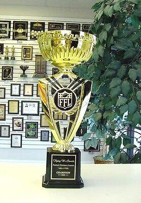 NEW FANTASY FOOTBALL SILVER CUP FFL INDIVIDUAL AWARD SUPER COOL AWARD TROPHY J*5