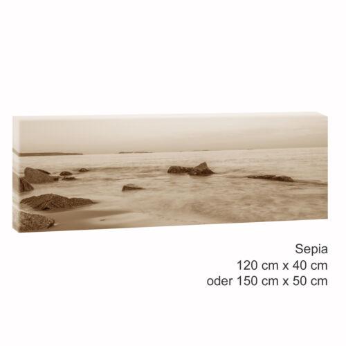 Bild Strand Meer Leinwand  Poster XXL 150cm*50cm 519 Strand Panorama sepia
