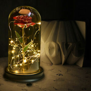 Red Rose With LED Glass Dome Light Beauty and The Beast