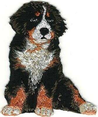 "2/"" x 2 1//4/"" Newfoundland Head Portrait Dog Breed Embroidery Patch"