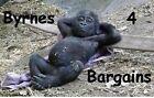 byrnes4bargains