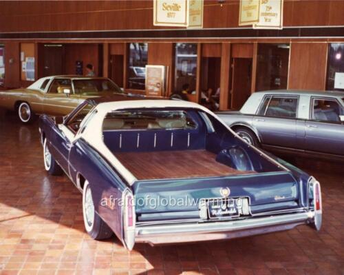 1977 Cadillac Eldorado Roadster Sportsmobile By Egidi Old Photo Automobile
