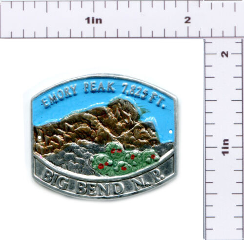 Hiking Staff Medallion Stocknagel-Big Bend NP-Emory Peak BN-2