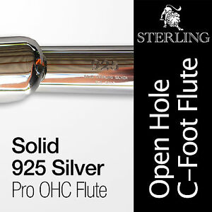 SOLID 925 SILVER Open Hole C Flute • With Case • Professional Quality •