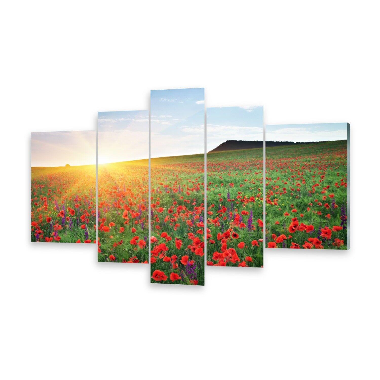 Mehrteilige Bilder Glasbilder Wandbild Feld MohnBlaumen