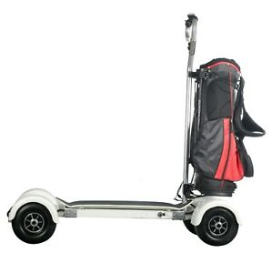 Ce Electric Skateboard Off Road Golf Cart Scooter Caddy