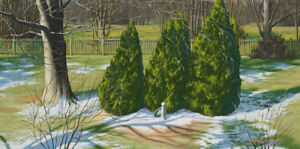 Original Acrylic Painting of Evergreen Trees 15x30 Landscape by Timothy Stanford