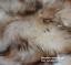 Sheepskin-rustic-stool-tabouret-hocker-sheepskin-Long-Wool-12-20cm-25-color thumbnail 8