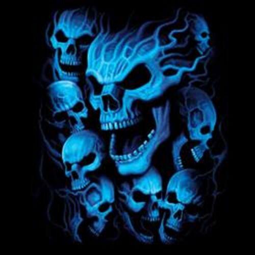 Blue Skulls Size 2 X Large-7 X Large Tank Tops