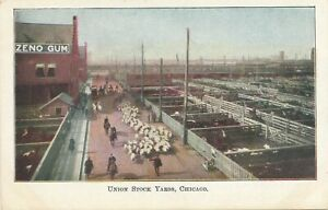 CHICAGO IL – Union Stock Yards – udb (pre 1908)