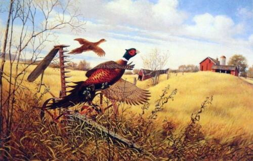 """Derk Hansen Pheasant Farm Print 9.25/"""" x 6.25/"""""""