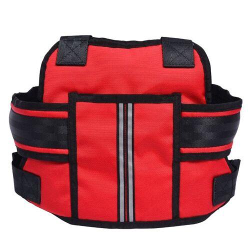 Children Motorcycle Bicycle Bike Safety Seat Belt Strap Harness Adjustable HOT