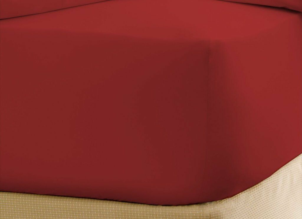 1000 Thread C 100% Egyptian Cotton 1 Fitted Sheet Only Burgundy Solid