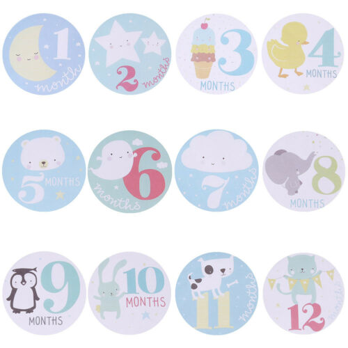 Baby Monthly Photograph Stickers Month 1-12 Milestone Stickers #3YE