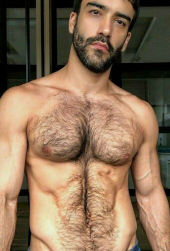 Shirtless Male Muscular Hairy Chest Abs Beard Torn Jeans