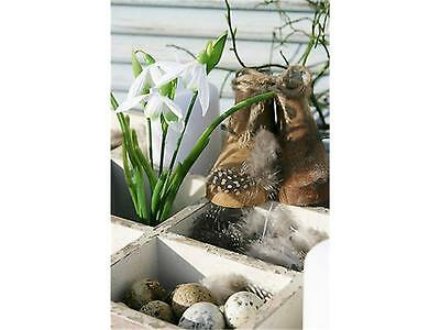 Schönes für den Frühling collection on eBay!