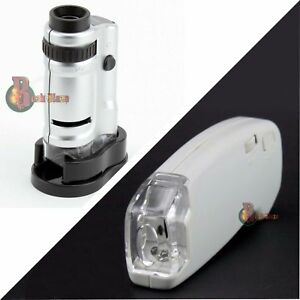 Basil Bush Microscope | Pocket & Hand-Held | LED Magnifier Zoom | Adjustable