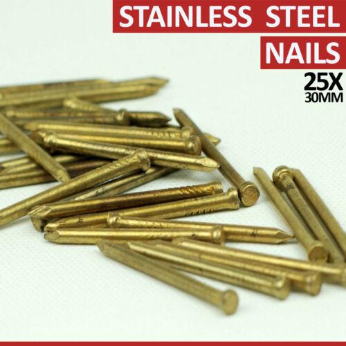 25X en acier inoxydable carbone élevée en maçonnerie ongles tige simple cadre suspendu 30 mm À faire soi-même