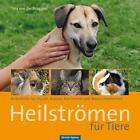 Heilströmen für Tiere von Tina der Brüggen (2014, Gebundene Ausgabe)