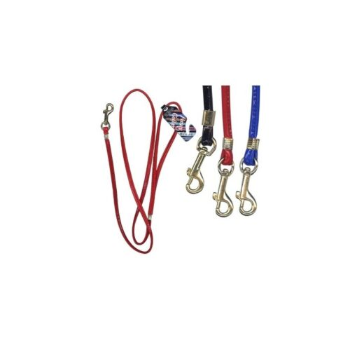 Fancy Fancy Dog  Lead for Dogs Special occasion for Dogs