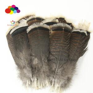Wholesale-unique-Wild-Turkey-Queue-Plumes-3-12-in-8-30-cm-10-100pcs