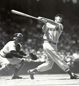 Details About Boston Red Sox Icon The Splendid Splinter Ted Williams Perfect Swing Classic