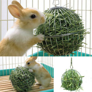 8cm-Silver-Sphere-Feed-Dispenser-Hanging-Ball-Pet-Toy-Guinea-Pig-Hamster-Rabbit