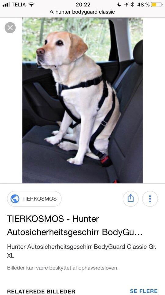 Hundesele, Lufte sele / bil sikkerheds sele til hund