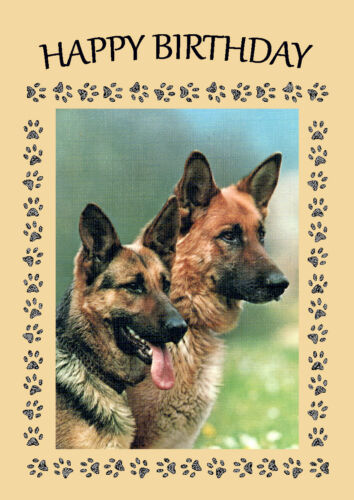 GERMAN SHEPHERD HEAD STUDY GREAT DOG BIRTHDAY GREETINGS NOTE CARD