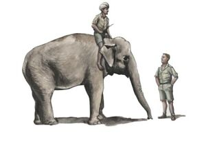 CMK-F48345-Resin-1-48-WWII-RAF-Mechanic-with-Indian-Elephant-and-Mahout