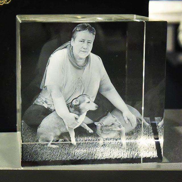 C80 Foto in 3D Glas Glas Glas Gravur Welpen Baby Tiere Husky Hunde dein Welpe 3D Katzen  | Qualitativ Hochwertiges Produkt  641a93