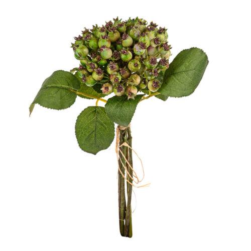 Hawthorn Berry Paquete 5 tallos 33cm//13 pulgadas altura Verde