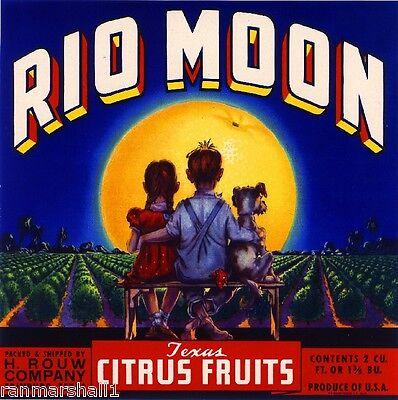 Edinburg Texas Tropic Moon Orange Citrus Fruit Crate Label Vintage Art Print