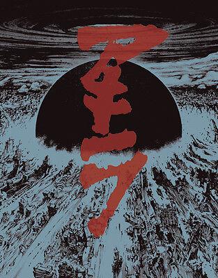 "**UK SELLER** 6 LARGE 23/"" x 29/"" Glossy Poster RARE Manga Anime Akira"