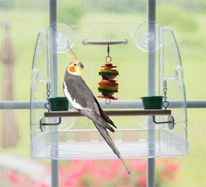 Terrific Details About Parrot Perch Bird Play Stand Small Window Seat View Play Center Perch Inzonedesignstudio Interior Chair Design Inzonedesignstudiocom