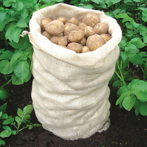 Hessian Sacks 20kg Potato Vegetables Storage Bag 50 x 70cm Block Out Sunlight