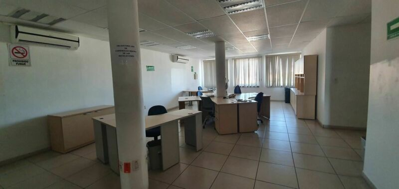 Oficinas en Renta Bosques del Prado Norte