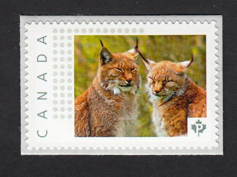 Image 1 - LYNX COUPLE = cats = Picture Postage MNH stamp Canada 2016 [p16/01-2lx4/3]