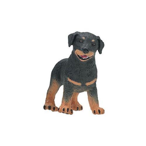 Safari Ltd 239229 Rottweiler Welpe 5 cm Serie Sternchen der Ausstellung