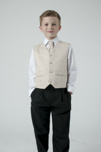 Boys Suits 4 Piece Champagne Waistcoat Suit Swirl Pageboy Party Formal Wedding